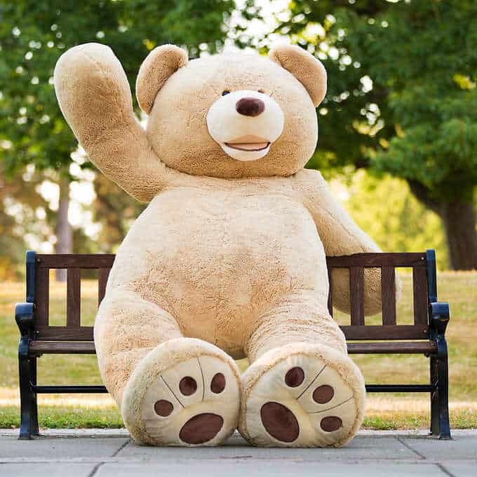 DIM weight pricing for this bear would make it cost the same to ship as a fridge.