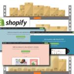 Shopify wholesale